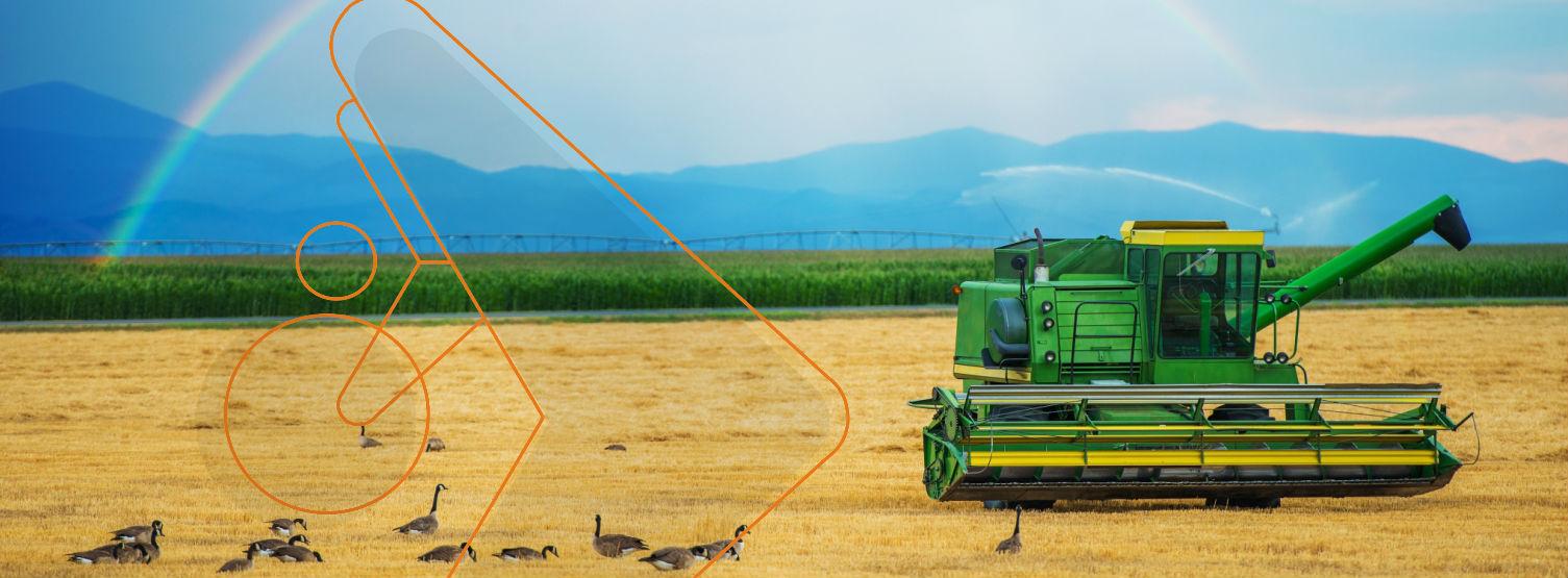 prime action agronegócios canais de distribuição